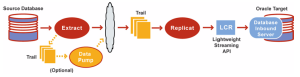 Integrated Replicat